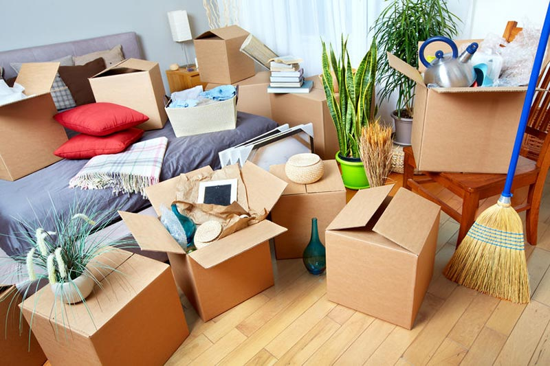 moving organising service london